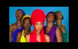 ErykahBaduBagLadyVideo_article-small_52003